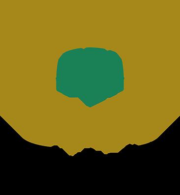 FEI -CCI logo
